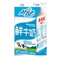 Fresh milk236ml